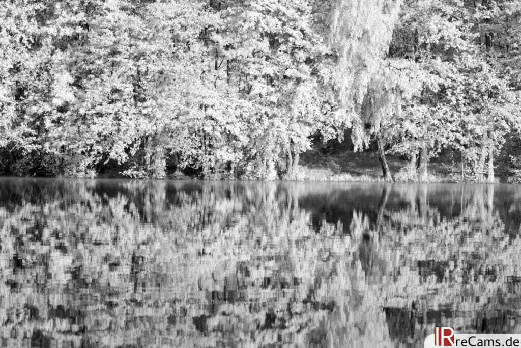 Am Pulower See | IR | 100 % | 100 mm | f/8,0 | 1/80 sec | ISO 100