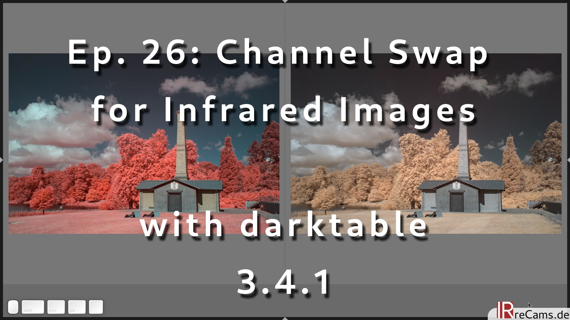 Ep. 26: Channel swap for Infrared Images with darktable 3.4.1 and the color calibration module