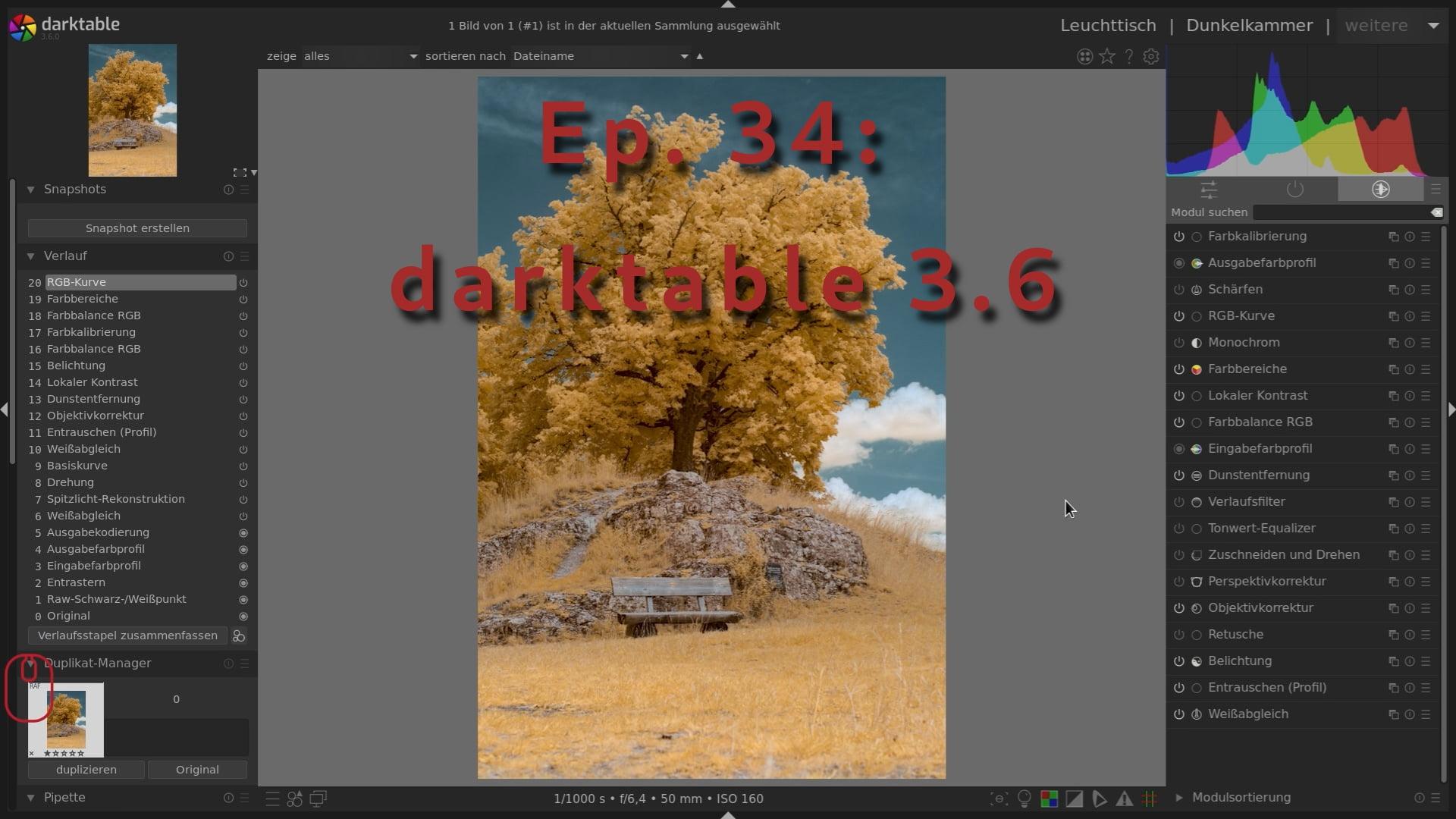darktable 3.6 für Infrarot Bildbearbeitung