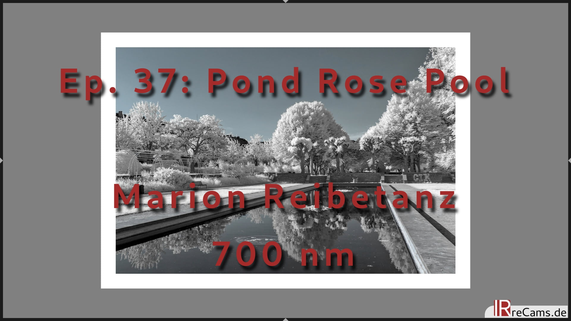 Ep. 37: Pond Rose Basin in Infrared - Colokey Image editing with 700 nm Filter